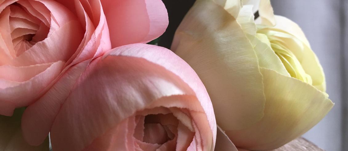 Fleuriste aux Créations romantiques et naturelles pour des bouquets d'exception sur Genève et aux alentours